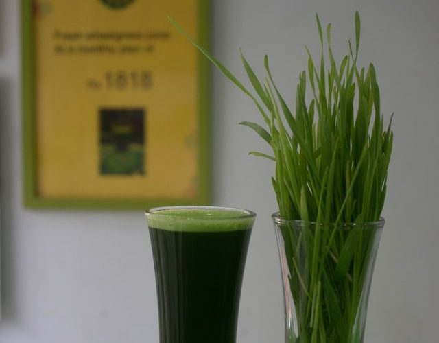 Wheatgrass Juicing and Cancer